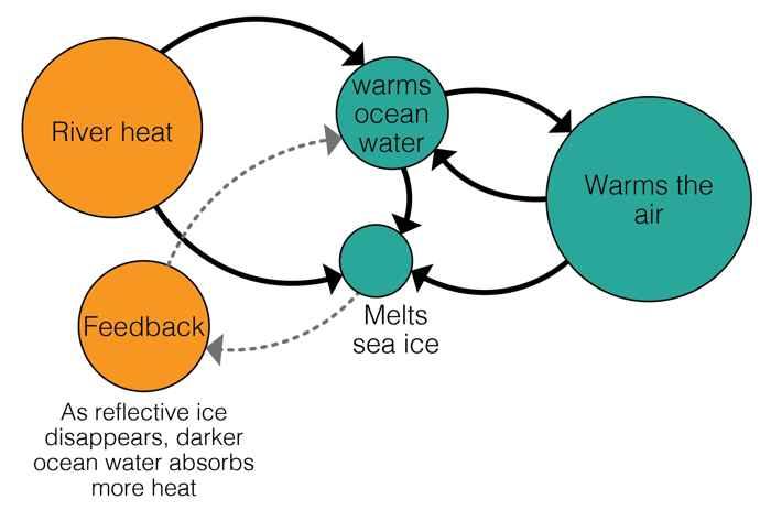 circuito de retroalimentación de los ríos del Ártico