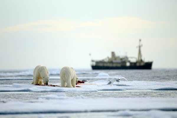 tráfico de barcos en el Ártico
